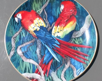 Wedgwood Plate | Scarlet  Parrots | Vintage Bone China | Limited Edition