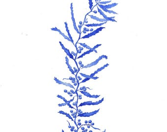 Delft Blue Seaweed, watercolour painting, art print, beach decor, coastal art, gift for her