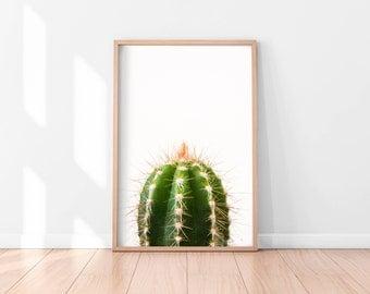 Cactus Wall Art, Cactus Print, Cactus Art, Desert Cactus Photo, Cactus South Western Decor, Cactus Photography, Minimalist Printable Art