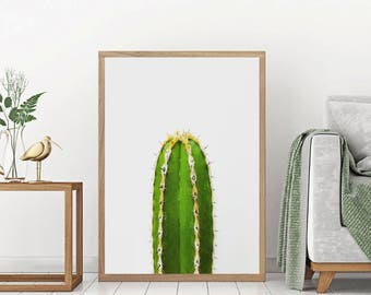 Desert Cactus Print - Cactus photo print, Large Cactus Wall Art,  Mexican Wall Art, Aztec Decor, South Western Home, Arizona Poster