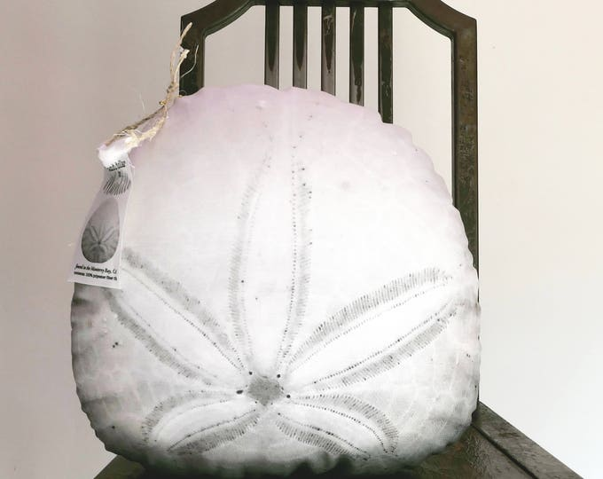 Sand dollar pillow made to order (2-sided)