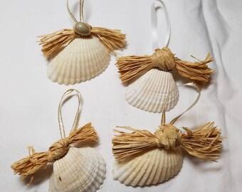 Arc Shell Ornament, White Arc Shell, Coastal Decor, Seashell Christmas Ornament, Nautical Decor, Beach Wedding Favors