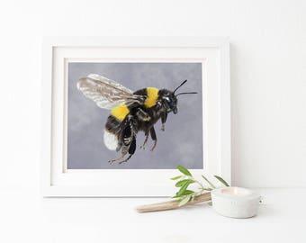 Bee art print - bee print - bee wall art - bumblebee print - bumble bee wall art print - bee print art