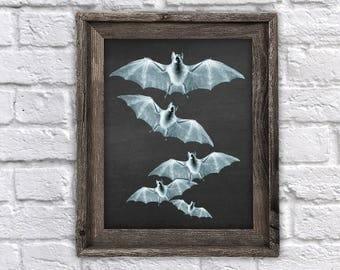 Halloween Decorations, Bats Art Print Black and White Art Print - Bat Wall Art - #Bat_Chk1