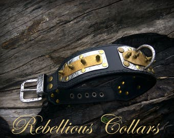 Leather dog collar with little spikes