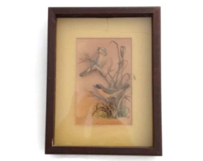 CIJ Sale Framed Art Work, Vintage Wall Decor, Bird Lover Gift, Yellow-Throats Artwork, Helen Fleming Artwork