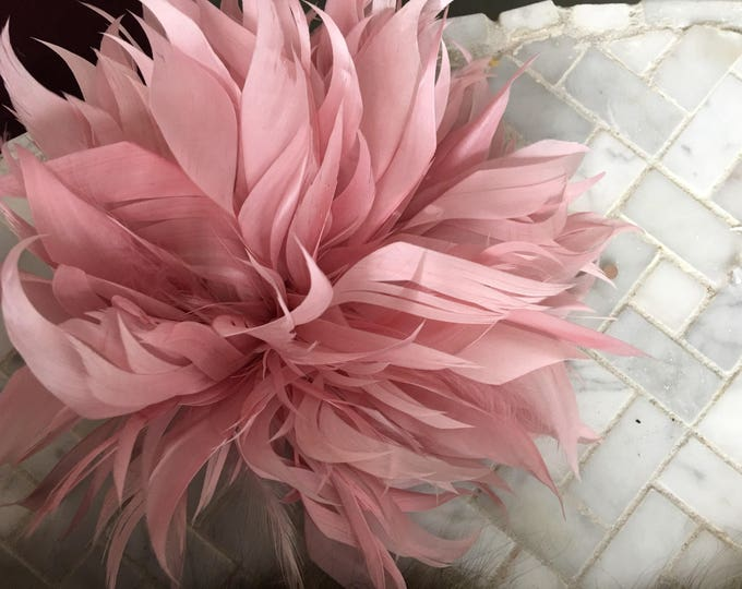 pink feather hair accessory , dance costume hair accessory