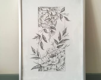 Peony Original Graphite Drawing