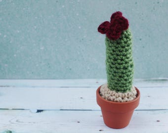 Tiny Potted Faux Cactus with Burgundy Flower Crochet / Knit