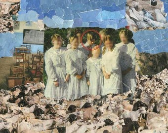 Collage (School children and goats)