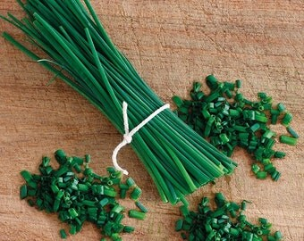 Chives Biggy Growing Kit