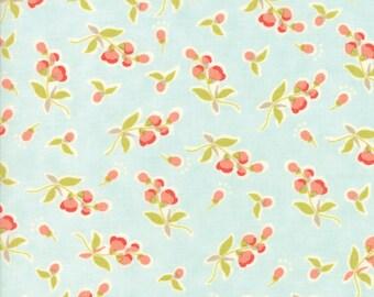 Moda Coney Island Quilt Fabric 1/2 Yard By Fig Tree & Co Ocean Blue 20282 13