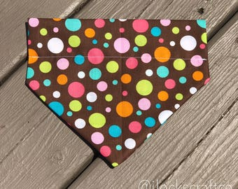 Brown/Colorful Polka Dot Over The Collar Bandana