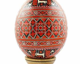 Zlin Ostrich Size Blown Real Ukrainian Pysanka Easter Egg