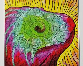 Reptile's Vision