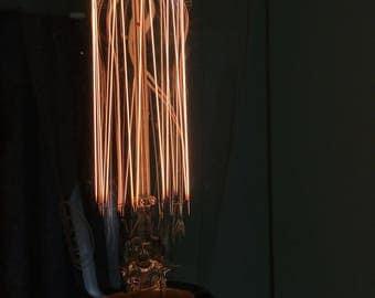 Portland Bill : Squirrel Cage Edison Light Bulb E27