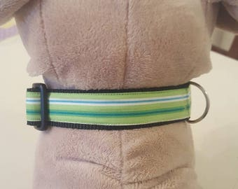 Dog collar green with stripes
