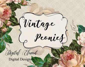 Peony Clip-art, Blush Peonies, Graphics, Hand Painted Clip-art, Wedding Vintage Peonies. No. E42