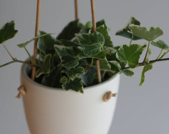 Small Grain Hanging Plant Pot