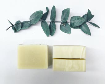 Eucalyptus - Handmade Natural olive oil Soap - weddings favors