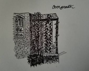 Overgrowth Series 2
