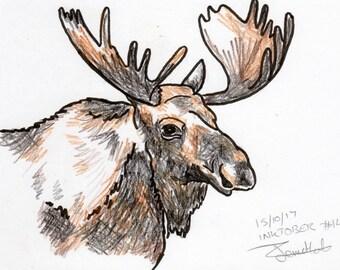 Inktober #14 2017 - Moose [PRINT]