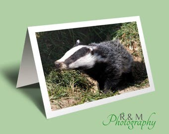 Badger Greeting Card - animal card - personalised card - badger - badger photograph - uk wildlife - any occasion card - nature photography