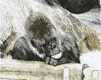 Print Gorilla 3