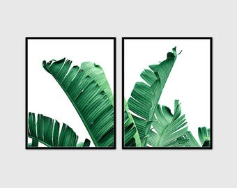 Banana leaf print. Set of 2 art print.