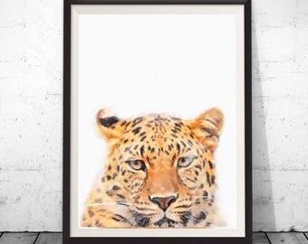 Leopard Cub Print, Baby Leopard Art Photo, Forest Jungle Animal Print, Nursery Animals, Modern Wall Art, Nursery Decor, Kids Room Printable