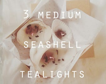 3 medium seashell tealights