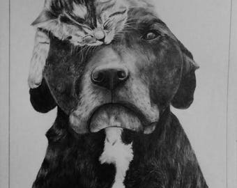 dog and cat graphite pencil