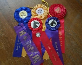 1950's and 1960's Horse Show ribbons