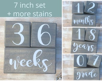 LARGE Baby Milestone Blocks, Baby Month Blocks, Baby Age Blocks, Baby Shower Gift, Photo Blocks, Photo Prop