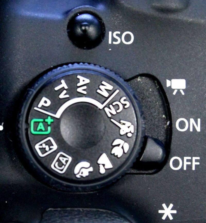 Automatic Setting on your Camera