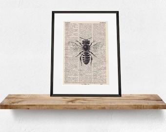 Pressure bee - antique book page - portrait