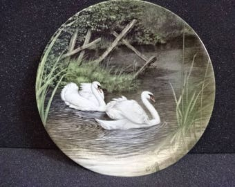 Decorative Royal Worcester Collectors Plate/Swan Lake/Bone China/Collectable/Vintage/1990