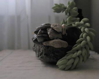 Layered rocks/stones succulent/cactus planter