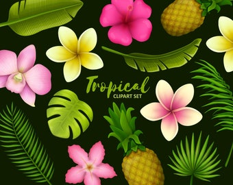 Tropical flowers and leaves clipart. Tropical clip art collection. Vector graphic.