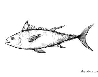 Bluefin Tuna - Art Print