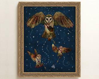 Healers Of Light - 8 x 10 Framed Art, LIMITED EDITION, Barn Owl Illustration, Owl Art, Owl and Cat, Magic, Fantasy Art, Whimsical, Celtic