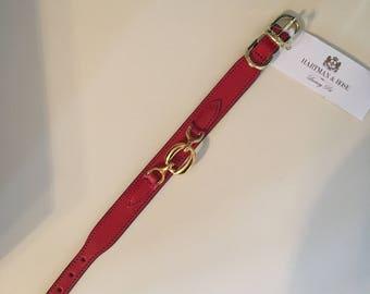10-12 inch dog collar