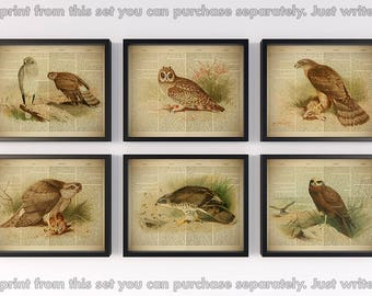 Bird wall art, Set of 6 prints, Dictionary art, Birds printable, Print set, Home wall decor, Eagle print, Vintage, Gift for men, 8x10, 11x14