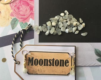 Moonstone and Gold Crystal Wrapped Hypoallergenic Earrings