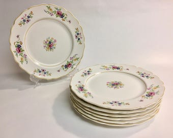 Canonsburg Pink Rose and Blue Yellow Floral Ironstone Plates with Scalloped Gold Edge | Set of 7| Salad Plates | Vintage Dessert Plates