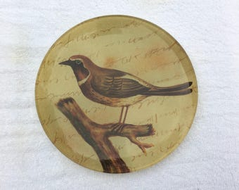 "8"" Collector Plate Bird"