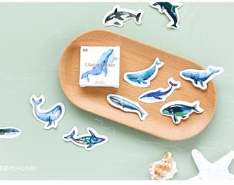 Whale stickers, lifelog stickers, kawaii, bullet journal, journal accessories, planner stickers, sea life, sea creatures