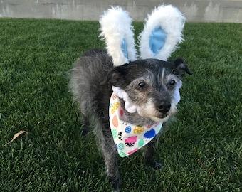 Chicks n Eggs - Easter - reversible pet bandana - dog bandana - cat bandana - unique pet accessory