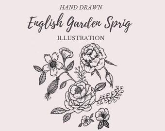 Hand Drawn English Garden Sprig- line drawing, flowers, plants, botanical, rustic, romantic, digital element, clipart