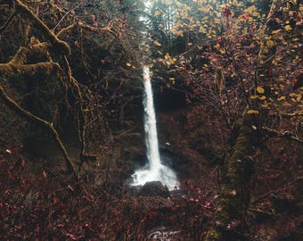 Limited Edition Metal Wall Art / Silver Falls Oregon / Metal Art / Metal Wall Decor / Metal Photo Print / Fine Art Photography / Waterfall
